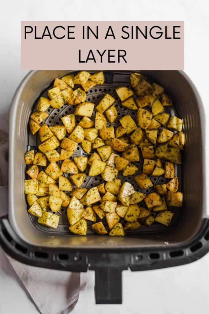 raw potatoes in a single layer in air fryer